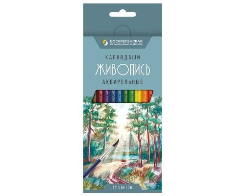 Карандаши 12 цветов Живопись акварельные